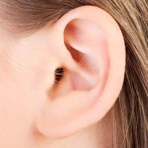 lobulo-oreja-bonome